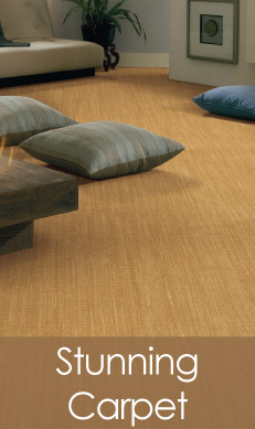 Katz Floorering Is Leesburg S Exclusive Abbey Carpet Floor Dealer And Will Help You With All